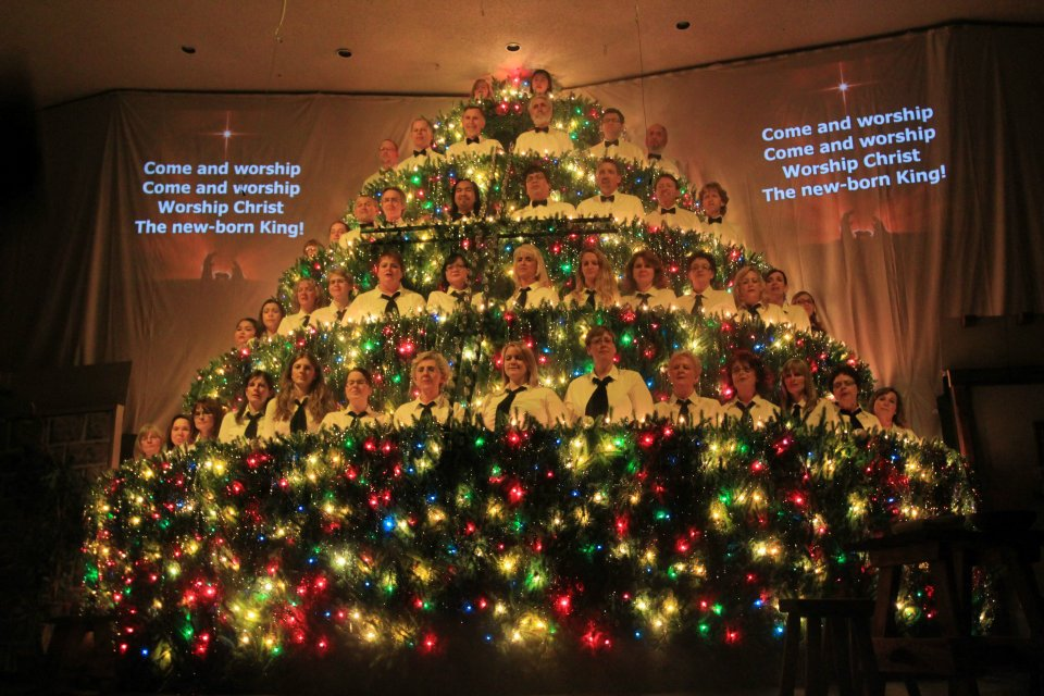 christmas trees singing tree - photo #8