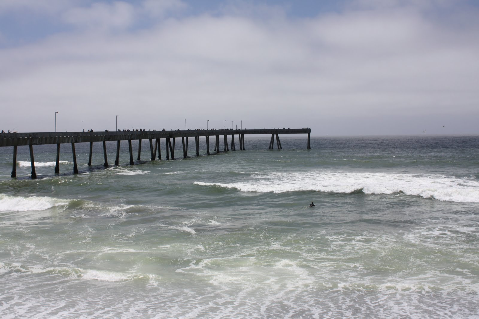 Pacifica pier for Pacifica pier fishing report