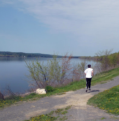 Facing Autism In New Brunswick Walking With Conor After Imfar Autism Research Convention