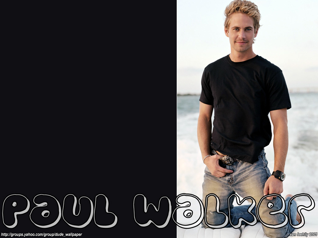 http://3.bp.blogspot.com/-weIPK2YrWHU/TzKZJsk8ZlI/AAAAAAAABWo/xSc4wyCRSUo/s1600/paul-walker-background-9-770349.jpg