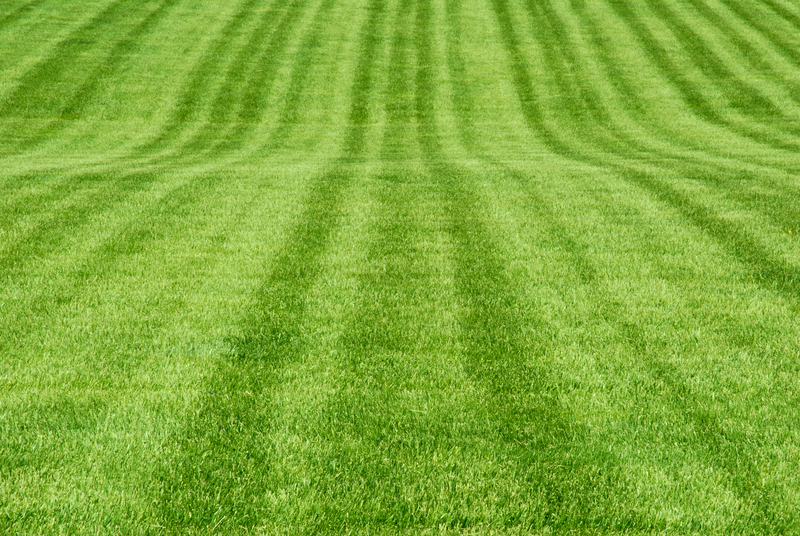 how to cut your grass like a baseball field