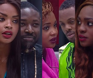 'Big Brother Africa' finale recap: Dillish Matthews wins Season 8