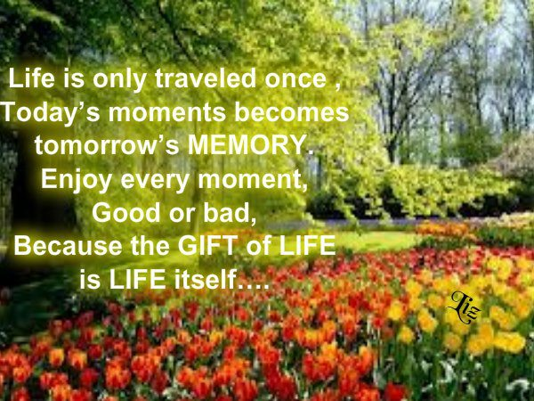 Life is only traveled once, today's moments becomes tomorrow's memory. Enjoy every moment, good or bad, because the gift of life is life itself...