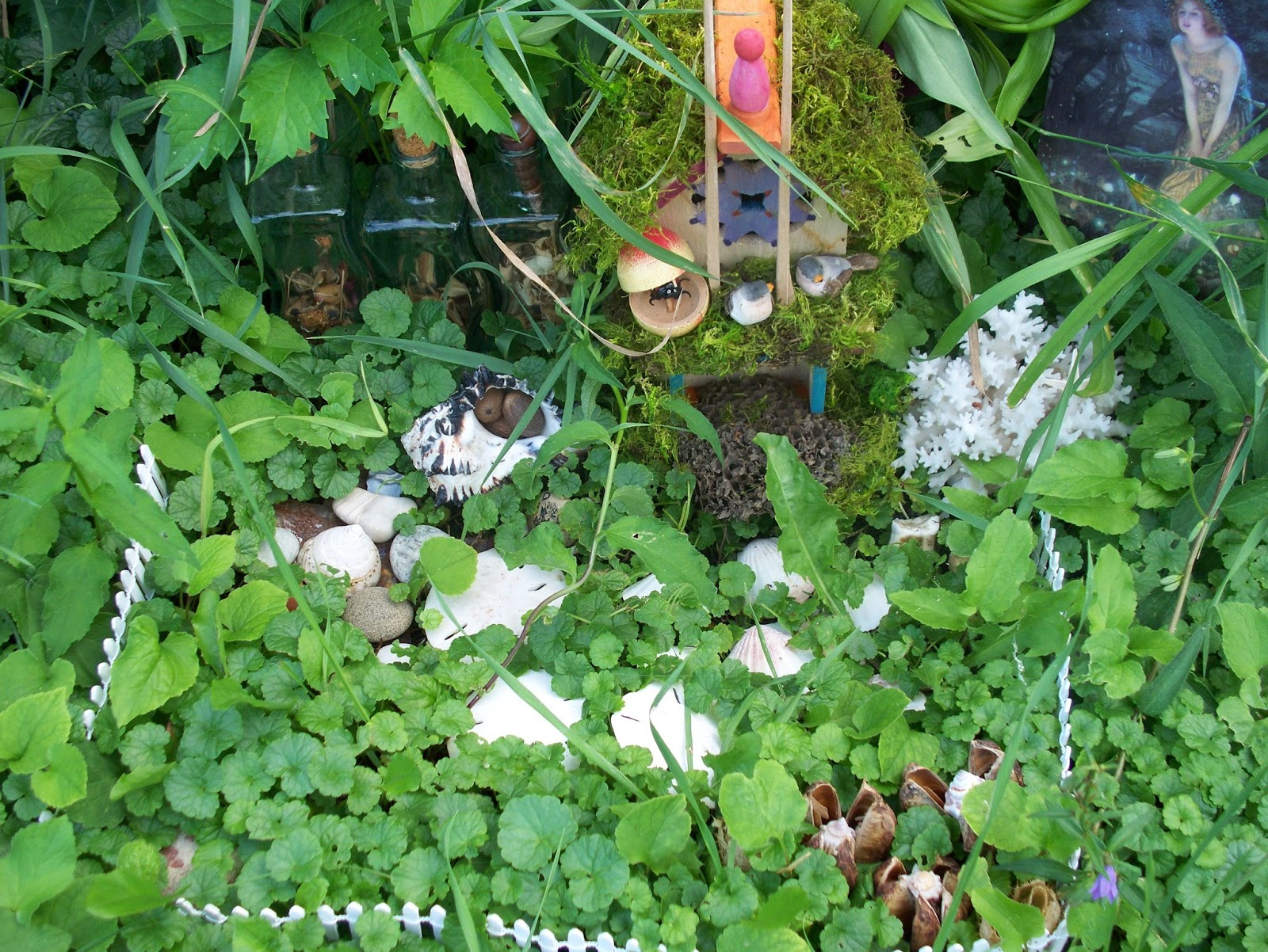 S amus mcmanus the irish tea drinking dog story for Irish fairy garden