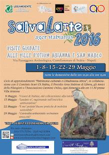 SalvaLArte Ager Stabianus 2016