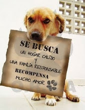 Adopta...