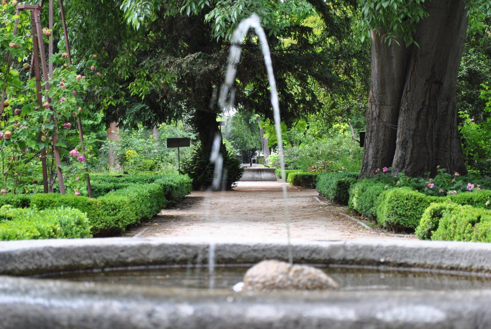 Andar como burro sin mecate el real jard n bot nico for Jardin botanico el ejido