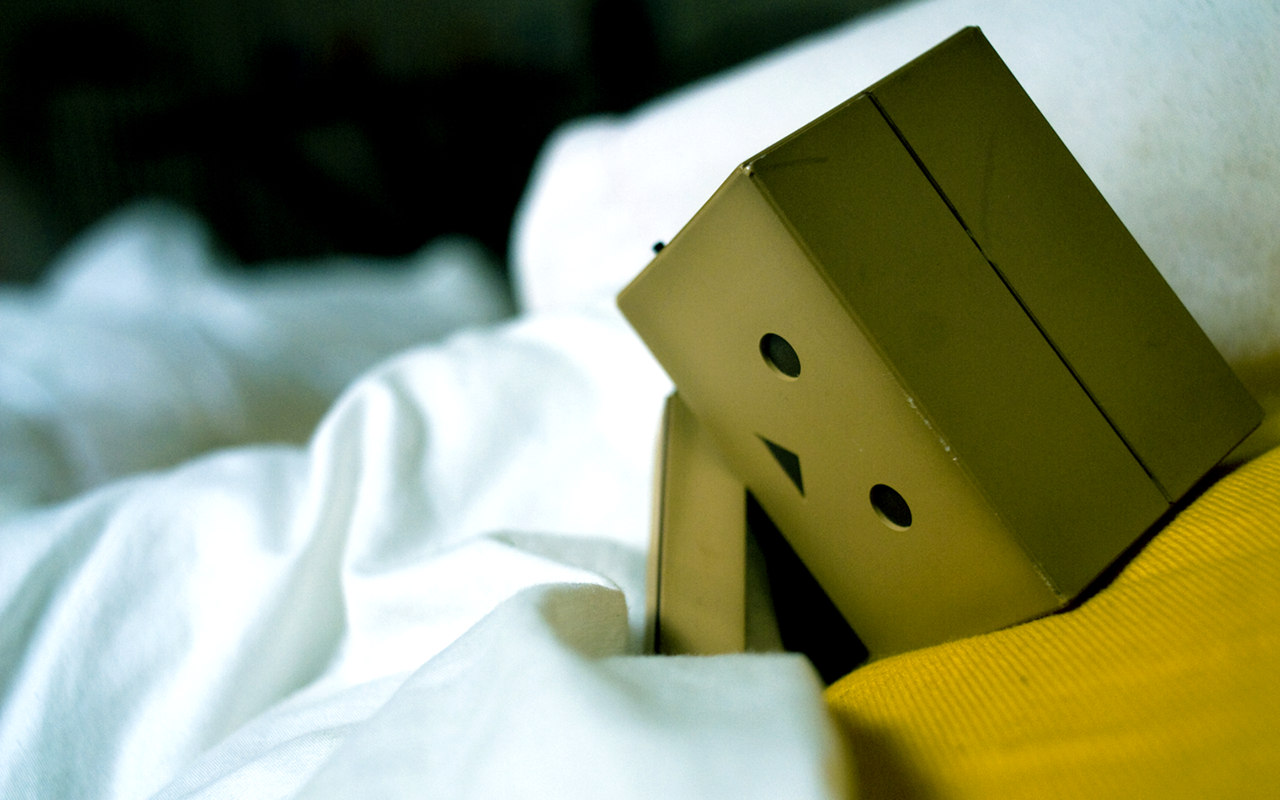 DANBO Sleeps Alone   D