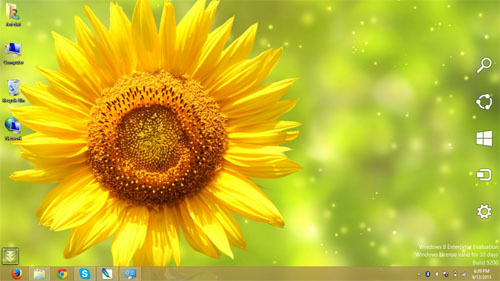 Sunflowers Theme For Windws 7 And 8 8.1