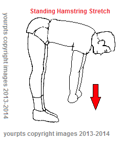 your physical therapy home exercises to stretch hamstring
