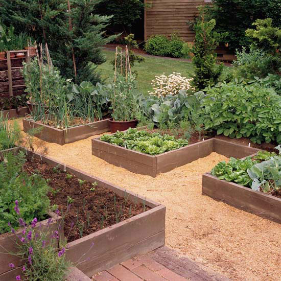 New Home Interior Design: Grow a Vegetable Garden in ...