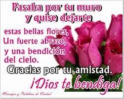 Frases De Amistad: Pasaba Por Tu Muro Y Quise Dejarte Estas Bellas Flores Un Fuerte Abrazo Y Una Bendición Del Cielo Gracias Por Tu Amistad