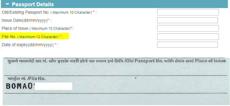 how to get passport file number