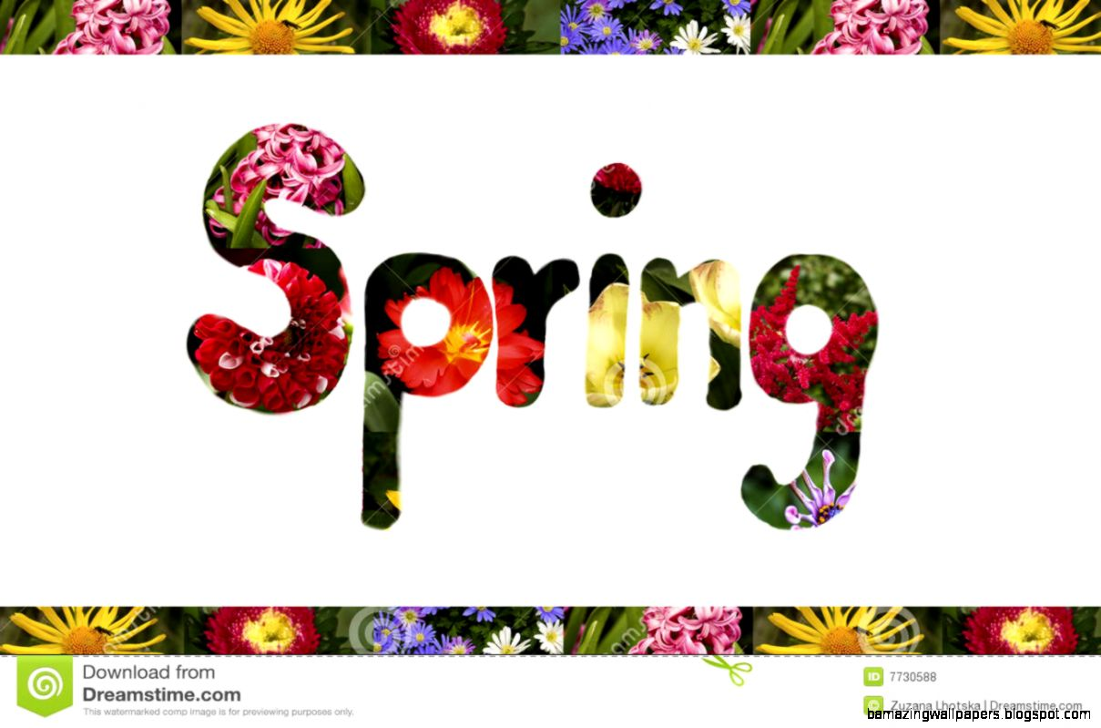 Spring Sign Royalty Free Stock Photos   Image 7730588