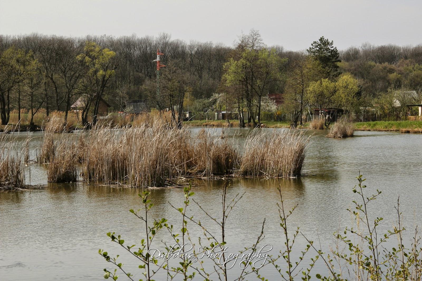 Kátovský rybník