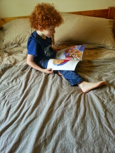 Boy sitting on Dormeo Memory Mattress reading a Christmas book