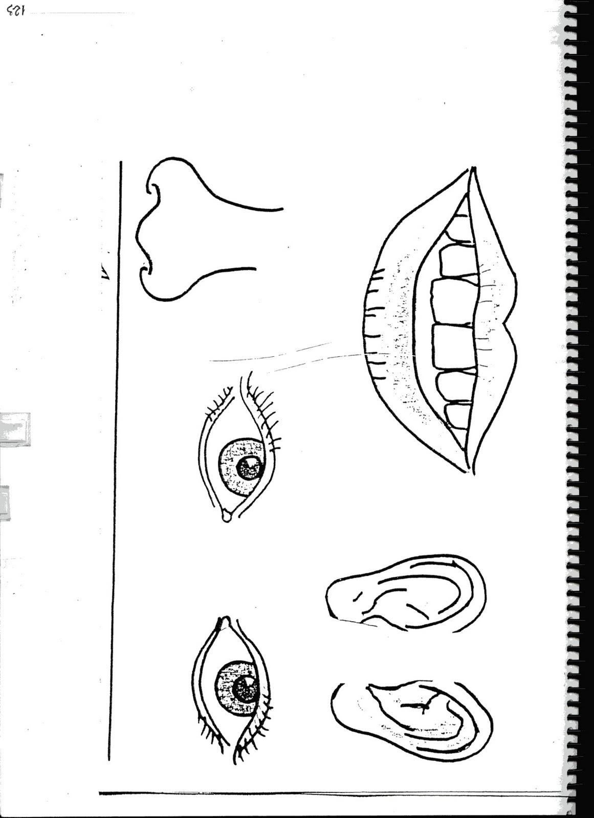 Fichas de inglés: Ficha Face 8: Make a face