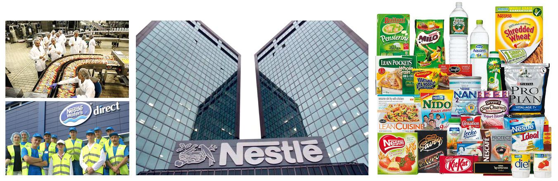 maggi turnover Nestle india limited group background  turnover of us$ 497 million in 2003, nestle india is  like maggi, nescafe, cerelac, lactogen.