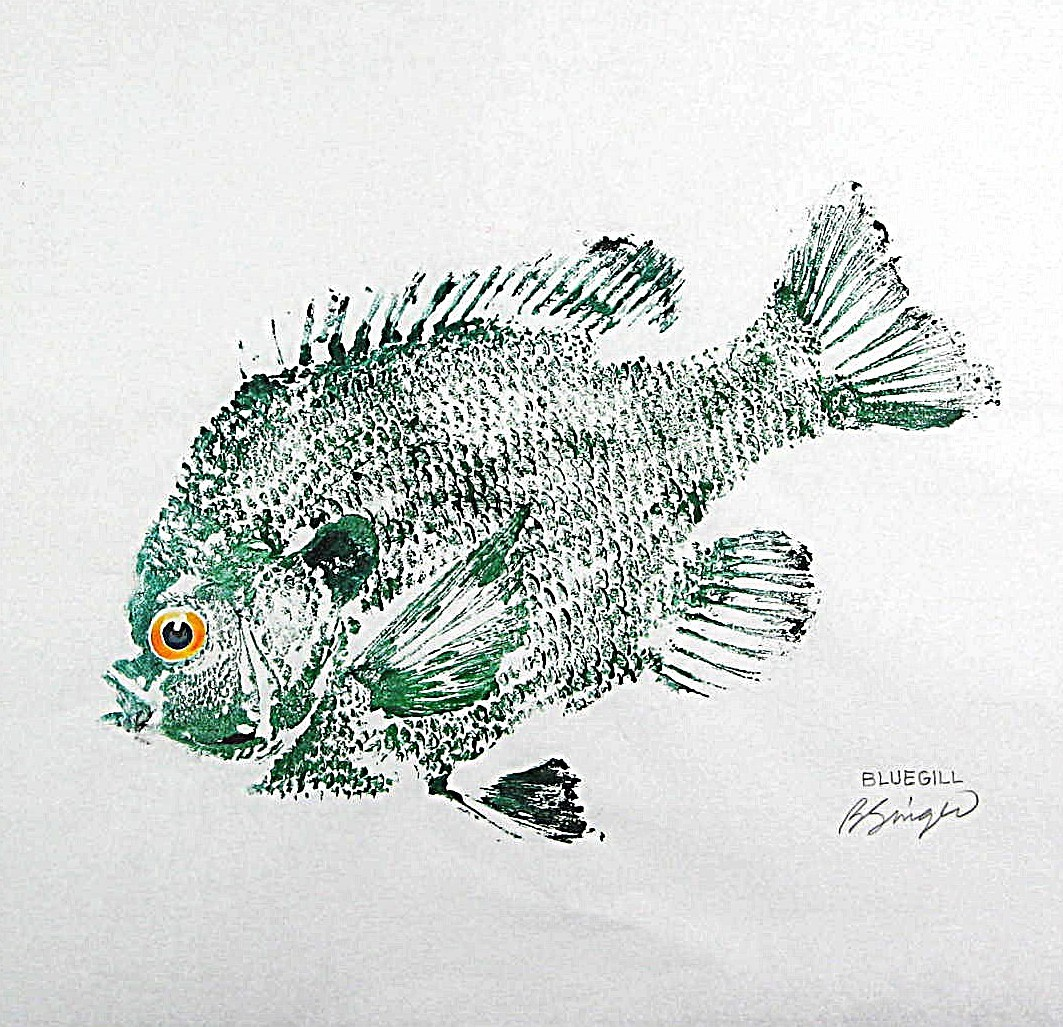penguin fish artist barry of fishfanatic