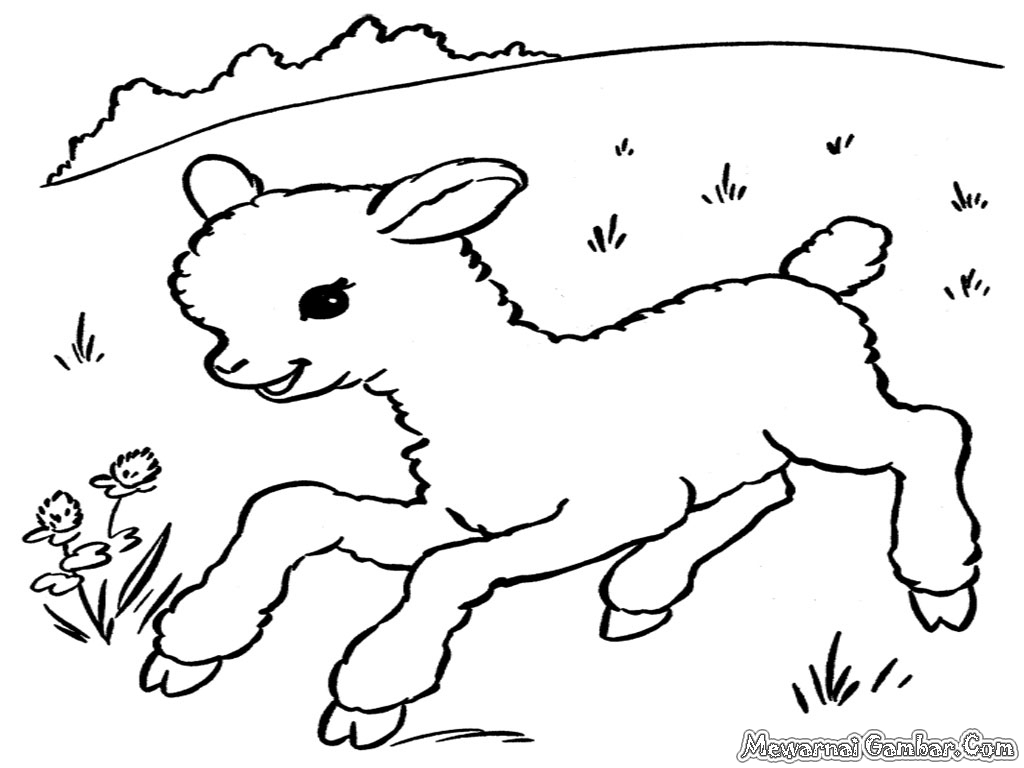 28 sheep coloring page n sheep colouring pages free printable