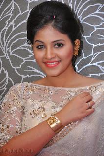 Anjali latest Glamorous pics in saree 011