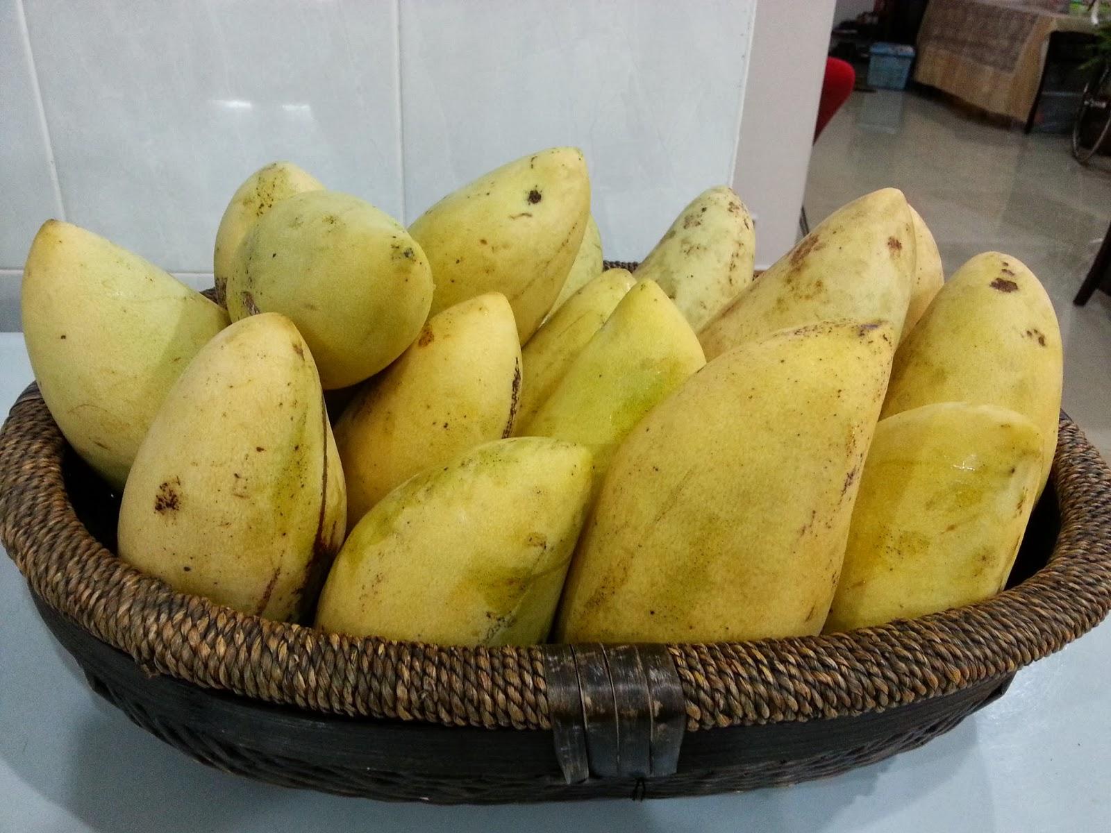 Thailand Rainbow Mango Lily Mangoes From Thailand