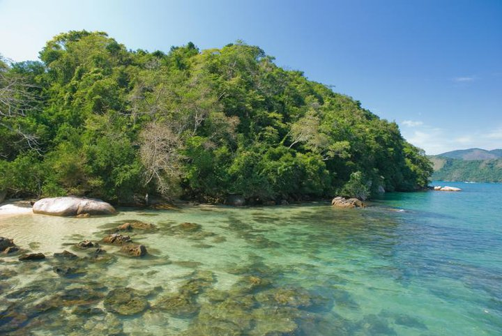 Ilha da Cotia