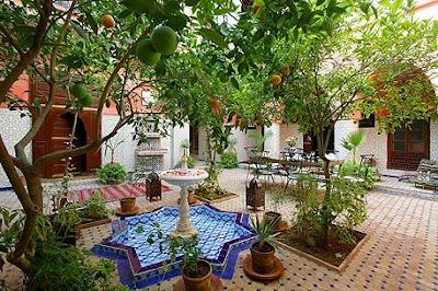 Faenas de la huerta limones for Los jardines de arbesu
