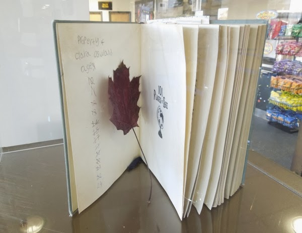 Clara Oswald 101 Places to See book leaf props Doctor Who