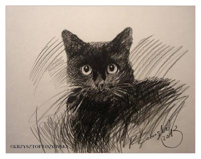 kot ,Kotyszki, Mikesz , rysunek kota