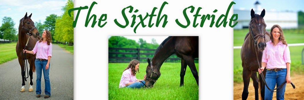 The Sixth Stride