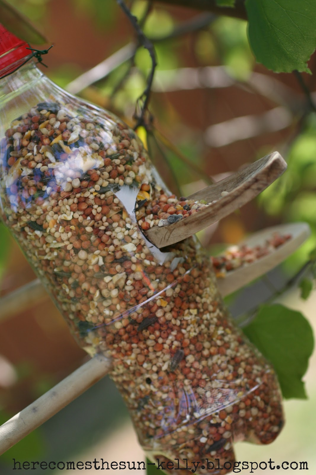 Soda Bottle Bird Feeder | Here Comes The Sun