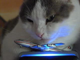 Kasey at the computer