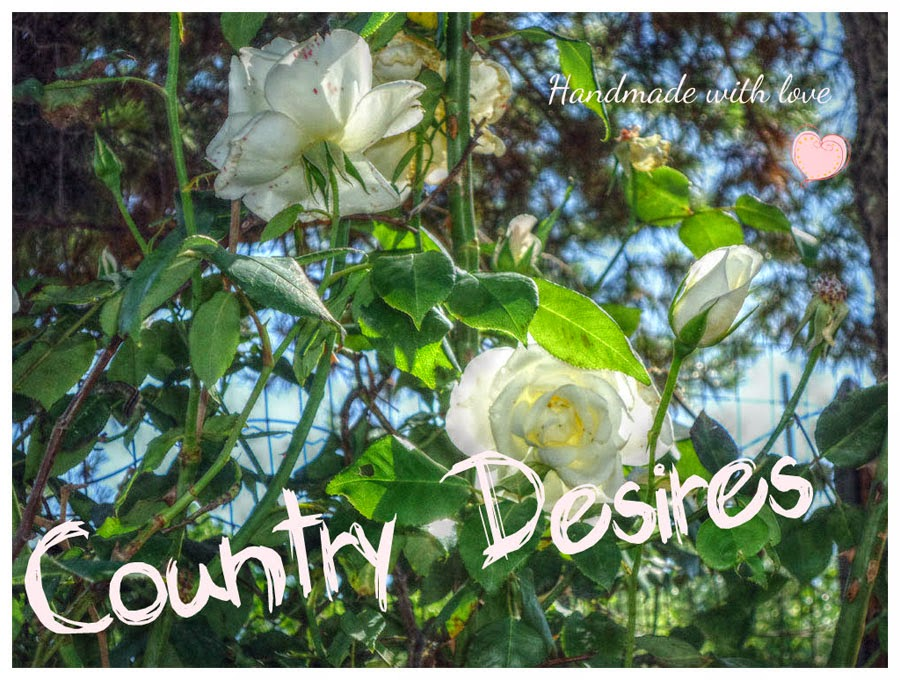 Country Desires