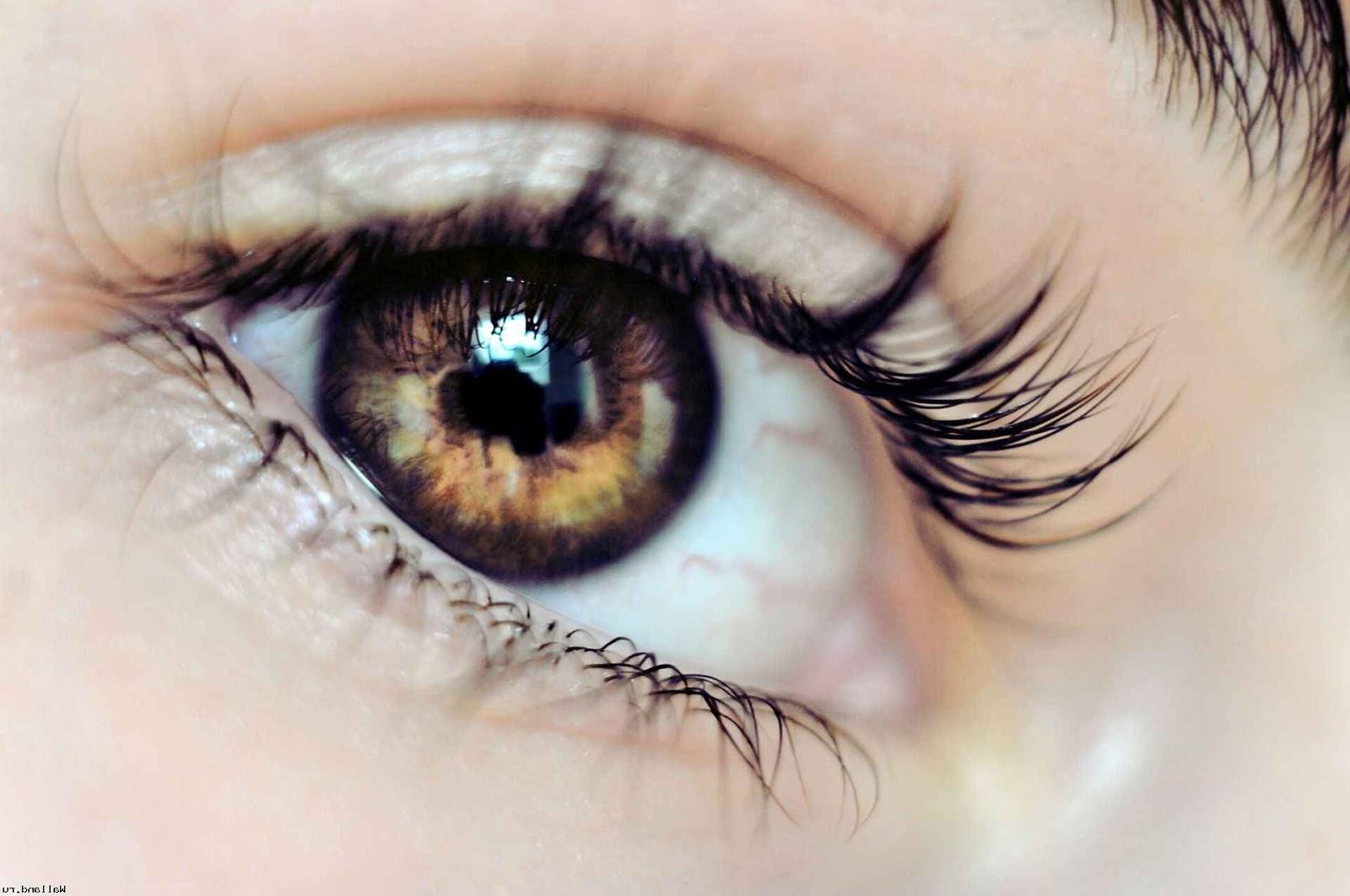 Почему глаз дергается левый глаз