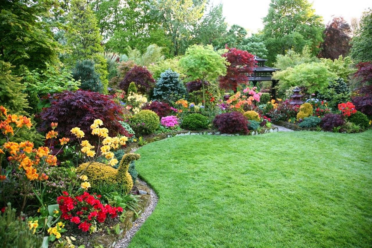 Paolasophia garden inspiration for Beauty garden