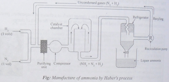 manufacture of ammonia by Haber's process