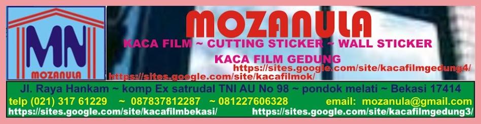 KACA FILM RIBEN|kaca film|sanblast|kaca film buram|kaca film es