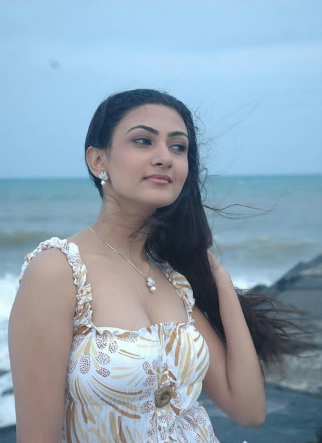 Tamil Actress Neelam Latest Hot and Spicy Stills