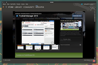Football Manager 2014 Steam Linux