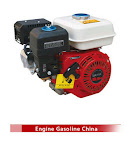 Gasoline Engine China