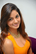 Actress Shilpi Sharma Hot Photo shoot-thumbnail-20