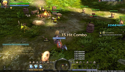 Cheat Dragon Nest Terbaru 2 Maret 2013