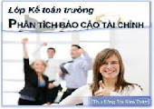 * Lập - Phân tích BC Tài TChính