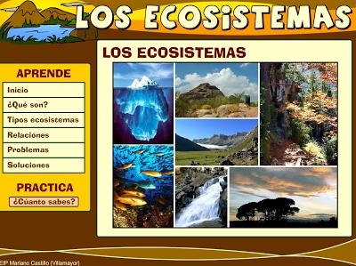 http://catedu.es/chuegos/kono/sexto/t1/eco2.swf