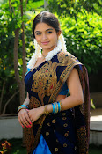 Sheena Shahabadi Latest Photos in saree-thumbnail-5