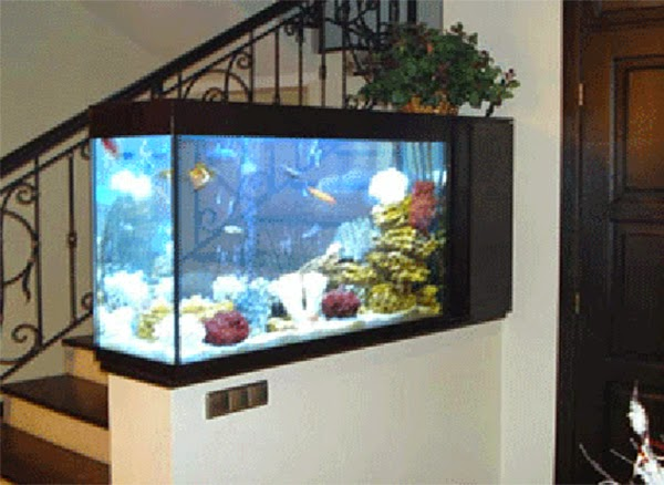 Aquarium Decoration Design : Top aquarium designs for your interior design