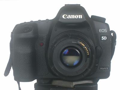 Reverse Lens Macro Photography