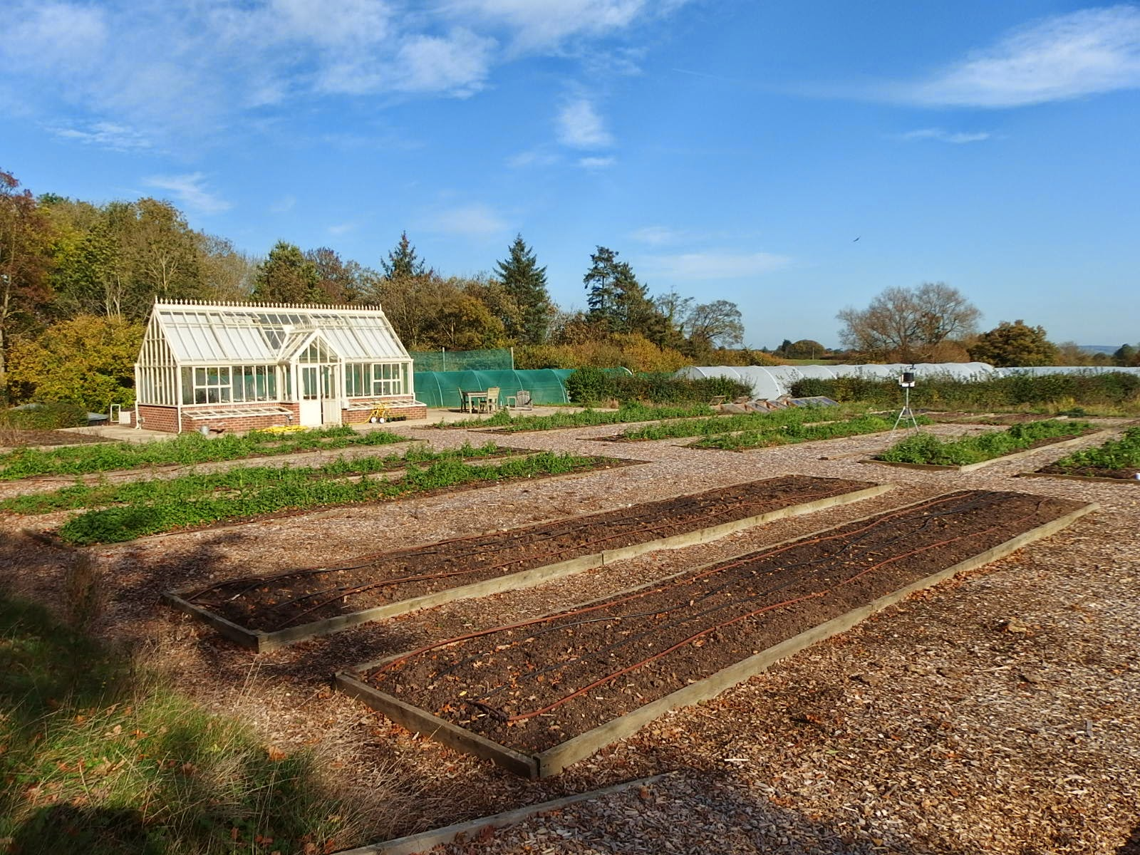 View of the nursery stock beds and greenhouse