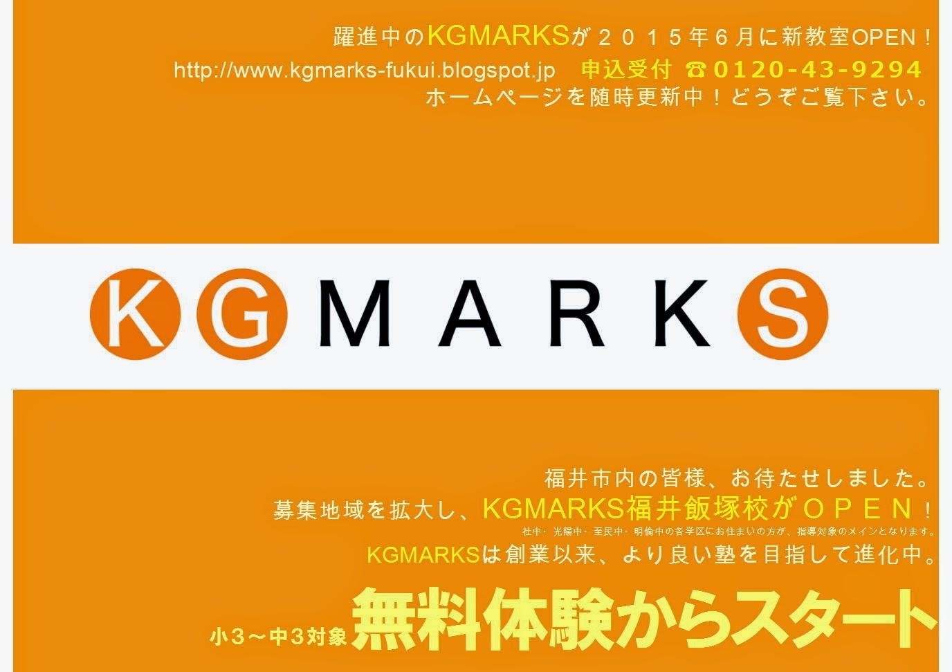 http://kgmarks.main.jp/iiduka2.pdf